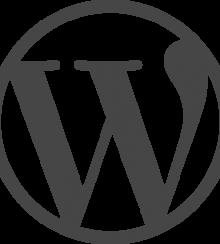 Gebruik van WordPress CMS neemt toe!